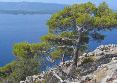 Chorwacja_19_044