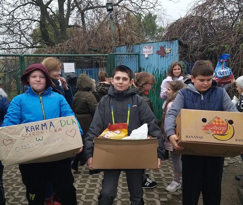 Pomagamy zwierzętom w schronisku w Orzechowcach